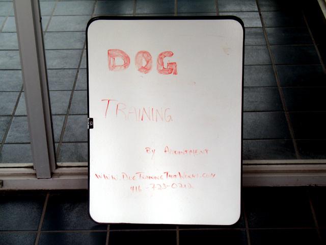 20110420consumersdog