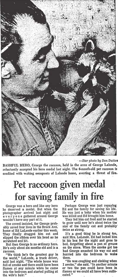star 1969-01-10 pet raccoon gets medal student aid numbers